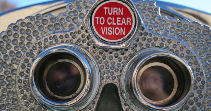 A Clear Picture of Vision